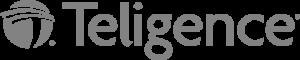 Teligence - 506 x 102GREY2
