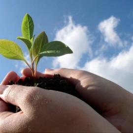 30 Days of Sustainability